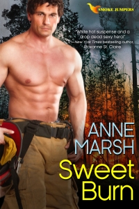 AnneMarsh_SweetBurn2500