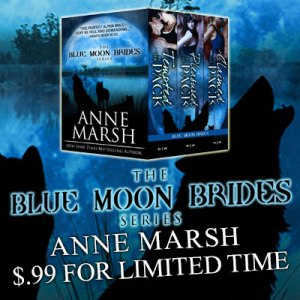 The-Blue-Moon-Brides-Sale